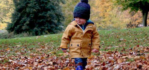 Kdy dát dítě do školky? Radíme rodičům